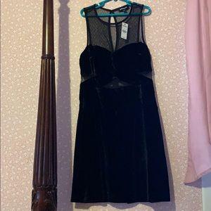 Express black Velvet mesh cutout mini dress